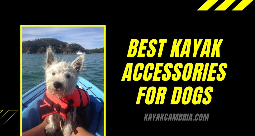 Best kayak accessories for dogs