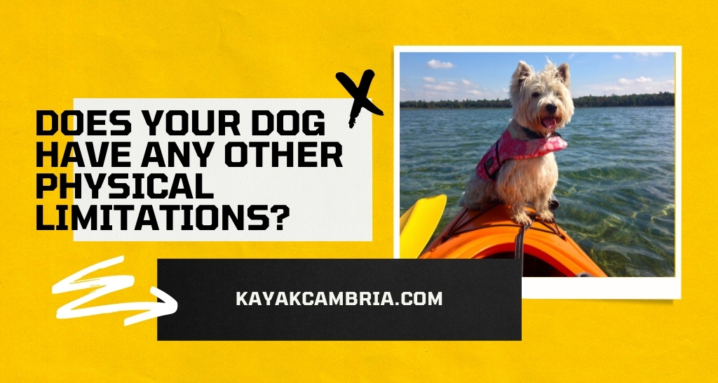 Does your dog have any other physical limitations