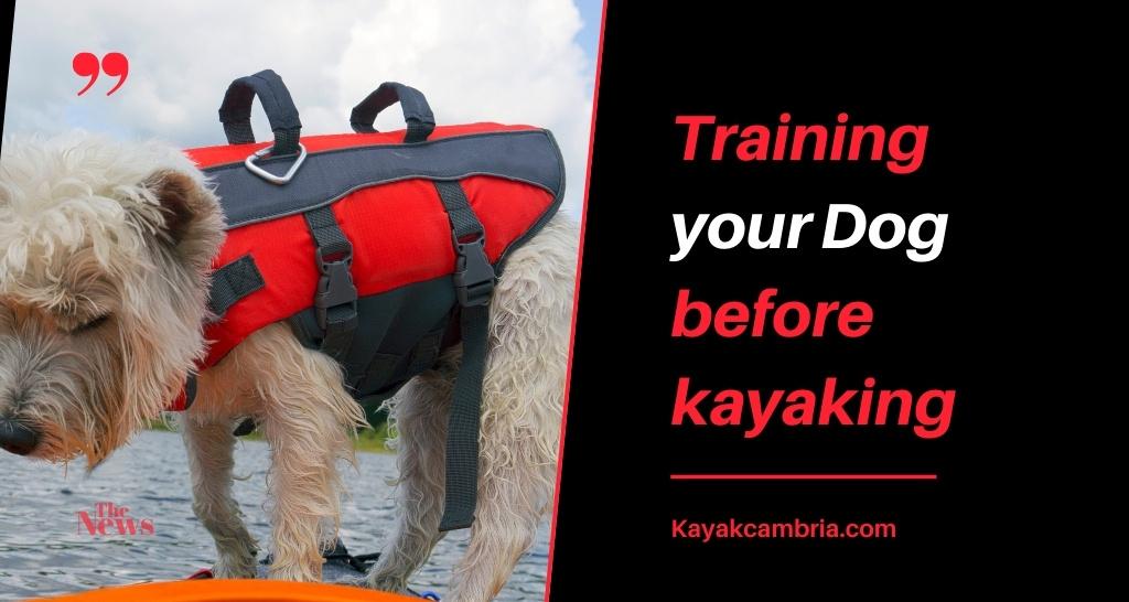 Training your Dog before kayaking